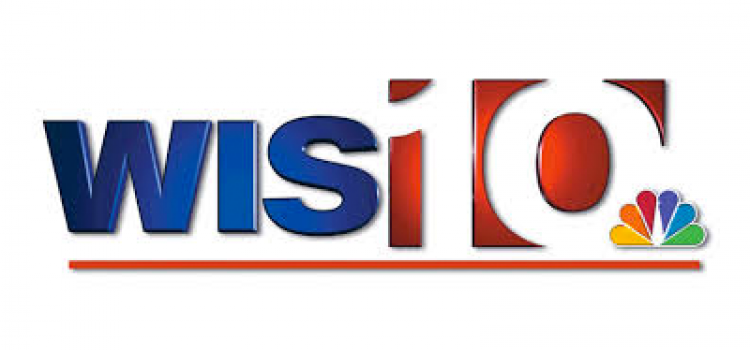 city tv logo sorgusuna uygun resimleri bedava indir