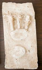Lizard Man footprint