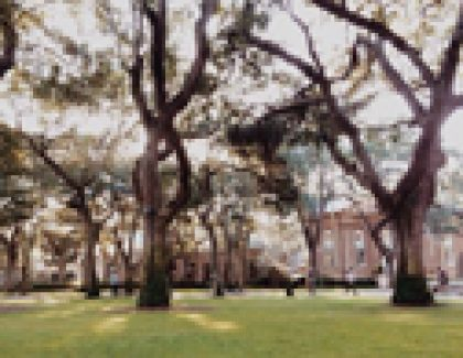 College of Charleston Board Of Trustees To Hold March Meetings
