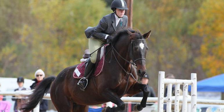 CofC equestrian