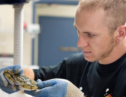 8 Incredible Summer Research Projects at the College of Charleston