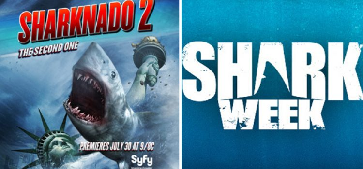 "College Shark Researcher Recommends ""Sharknado"" Over Shark Week"