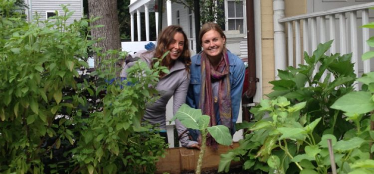 5 Stress-Reducing Tips from Campus Urban Garden Experts