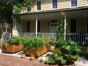 urban garden pol