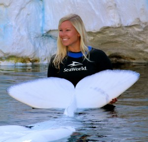 Megan Saylor '11 at beluga whale encounter at SeaWorld