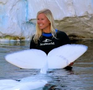 Megan Saylor '11 at beluga whale encounter at SeaWorld