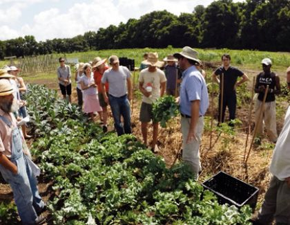 Farm to School Program Growing Across South Carolina
