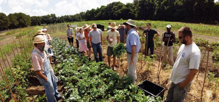 Farm to School Program Growing Across South Carolina