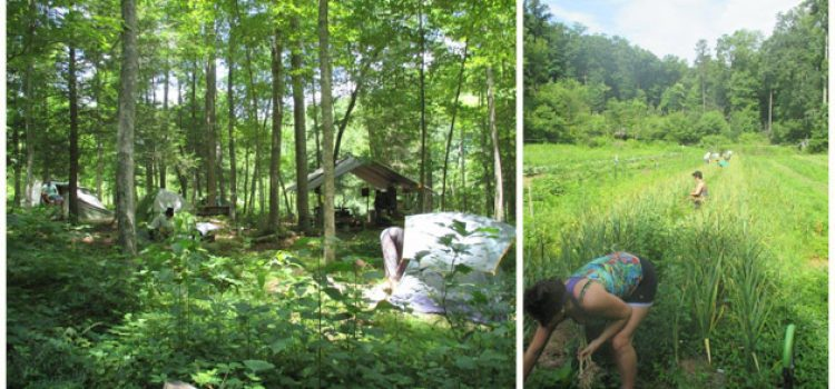Camping for Credit: Summer Class Embraces Ecovillage Living
