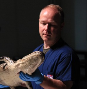 Professor of Paleontology Phil Manning is fascinated by the evolution of life on Earth.