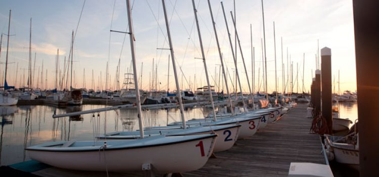 5 Reasons to Cheer for College of Charleston Sailing