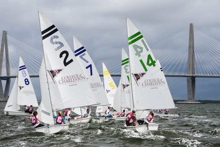 Four CofC Cougars Sailing in Summer Olympics