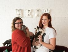 CofC Alums to Open Cat Cafe in Charleston