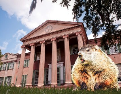Groundhog Day: The Science Behind the Myth