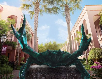 April Fools: CofC Unveils New Mascot