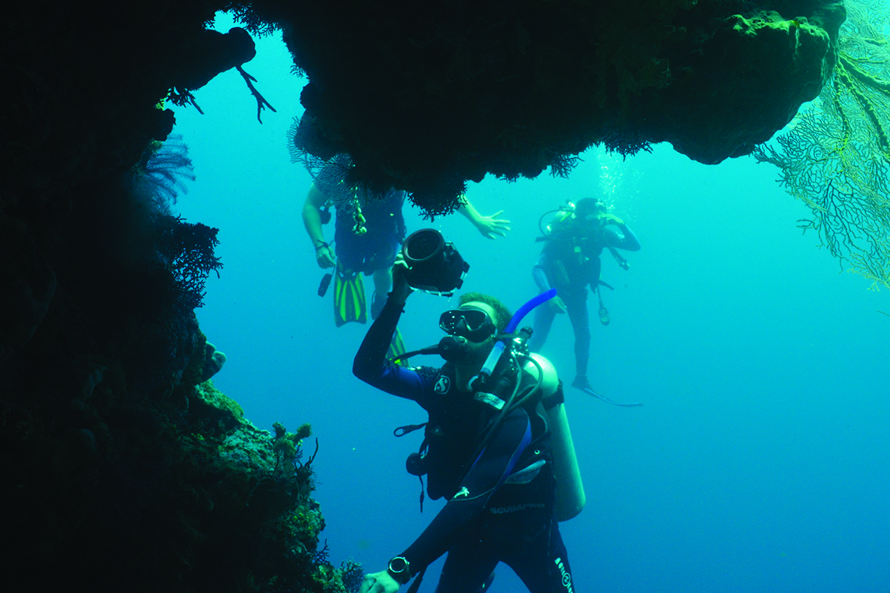 CofC Among Nation's Top Values For Marine Biology Bachelor ...
