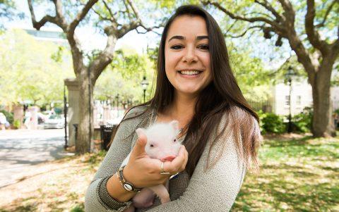 Under the Moss: This Little Piggy Explores CofC