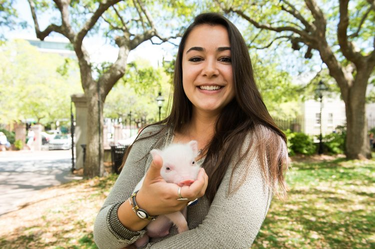 Under the Moss: This Little Piggy Explores CofC