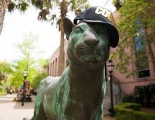 Cougars Fan Tips Hat to Mental Health at CofC