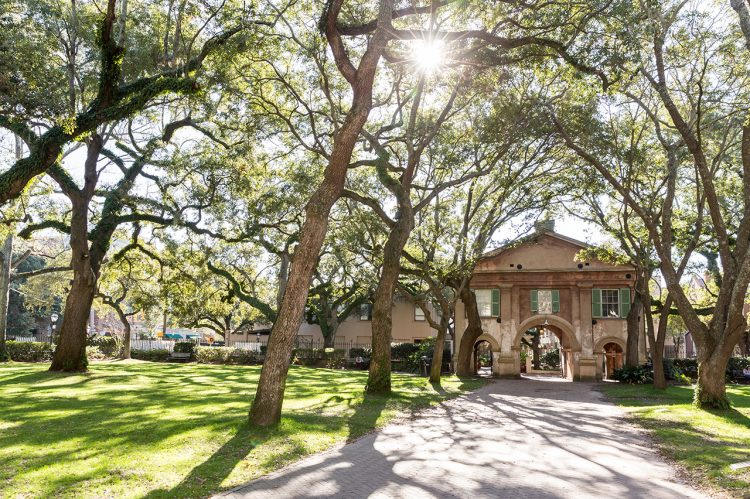 CofC Named America's Most Beautiful College Campus