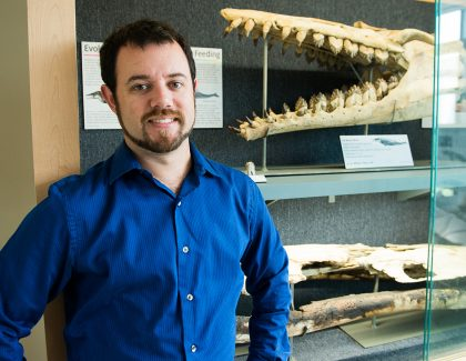 This Fossil Is a Whale of a Discovery
