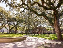 CofC Earns High Marks from The Princeton Review