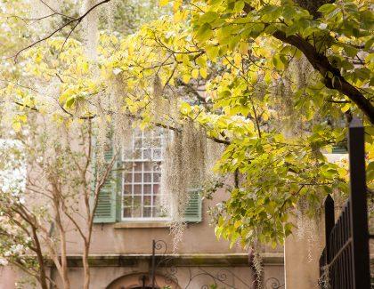 College of Charleston's Week in Photos