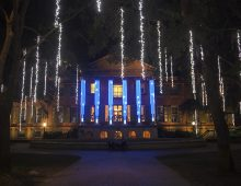Cougar Night Lights Ring in the Holidays