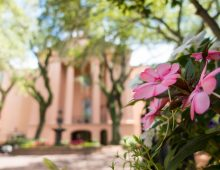 Find Your Place of Zen with CofC's Peace Initiative