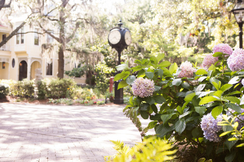 Tour the College of Charleston Campus From Your Couch