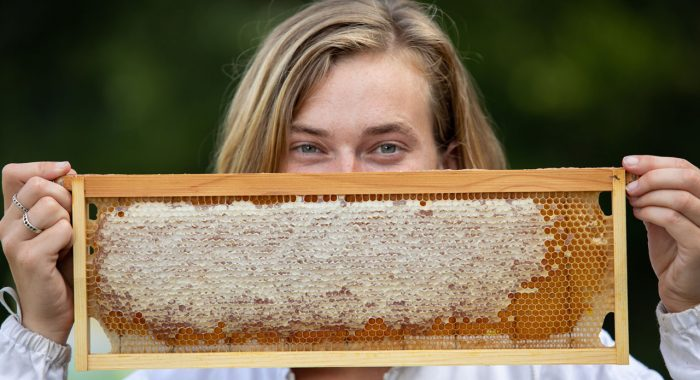 Apiary has Student Garden Buzzing with Excitement