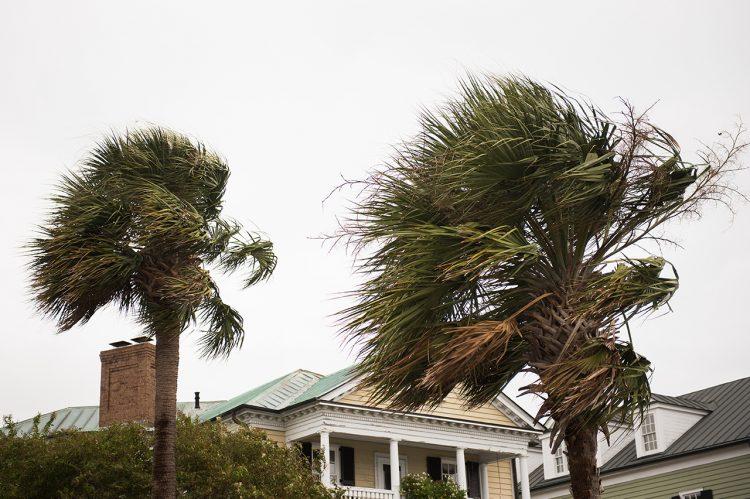 What to Expect This Hurricane Season