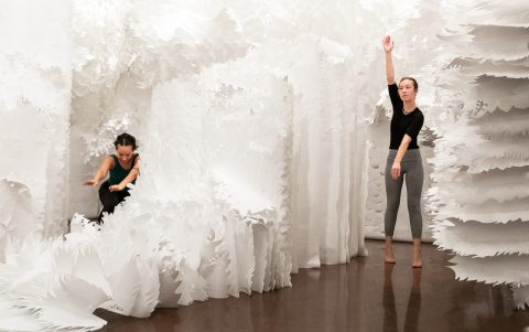 Dance Comes to the Halsey Institute