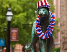 Quiz: Who Is Your Cougar Spirit This July 4?