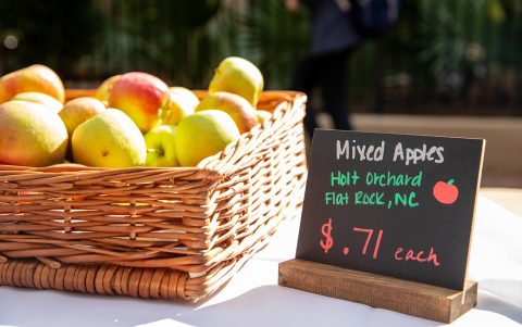 CofC Farmers Market Connects Students From Farm to Table