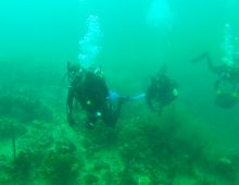 Students Do Deep Dive Into Reef Research