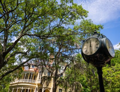 New Professors Join CofC's Faculty