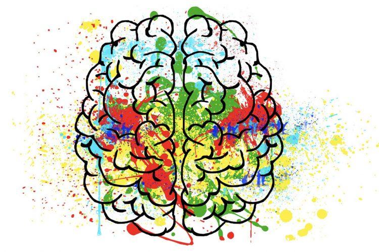 CofC Neurodiversity Initiative Seeks to Open Minds