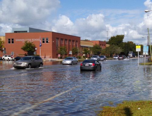 College a Key Player in Charleston's New Climate Action Plan