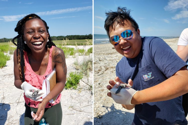 Learning Aquatic Turtle Conservation Offers a Wave of Insight
