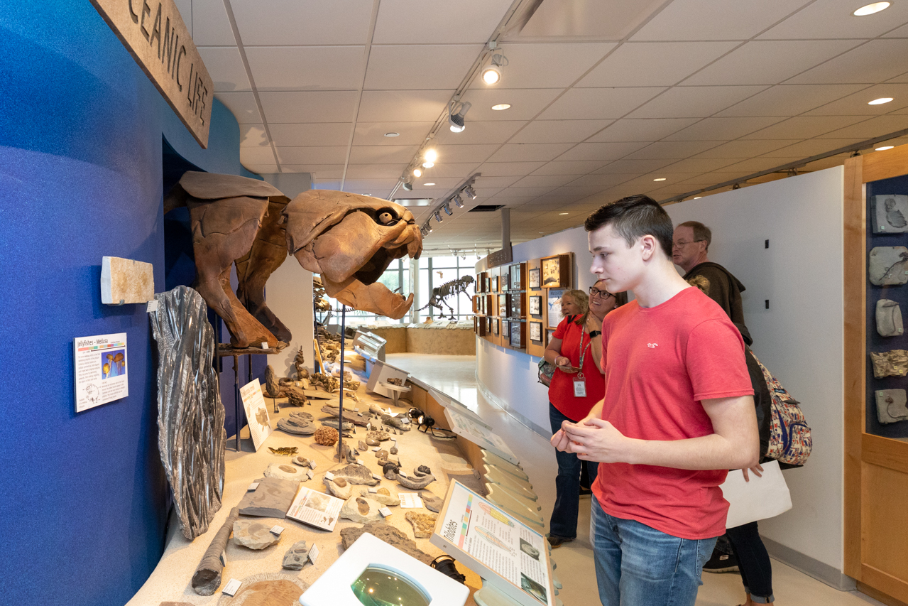 Students from a local high school tour the Mace Brown Museum