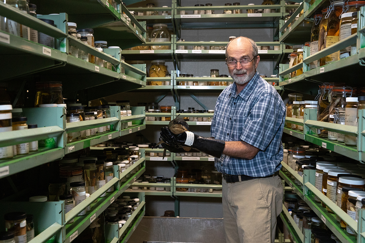 Tony Harold in Fish and Invertebrate Collection at Grice