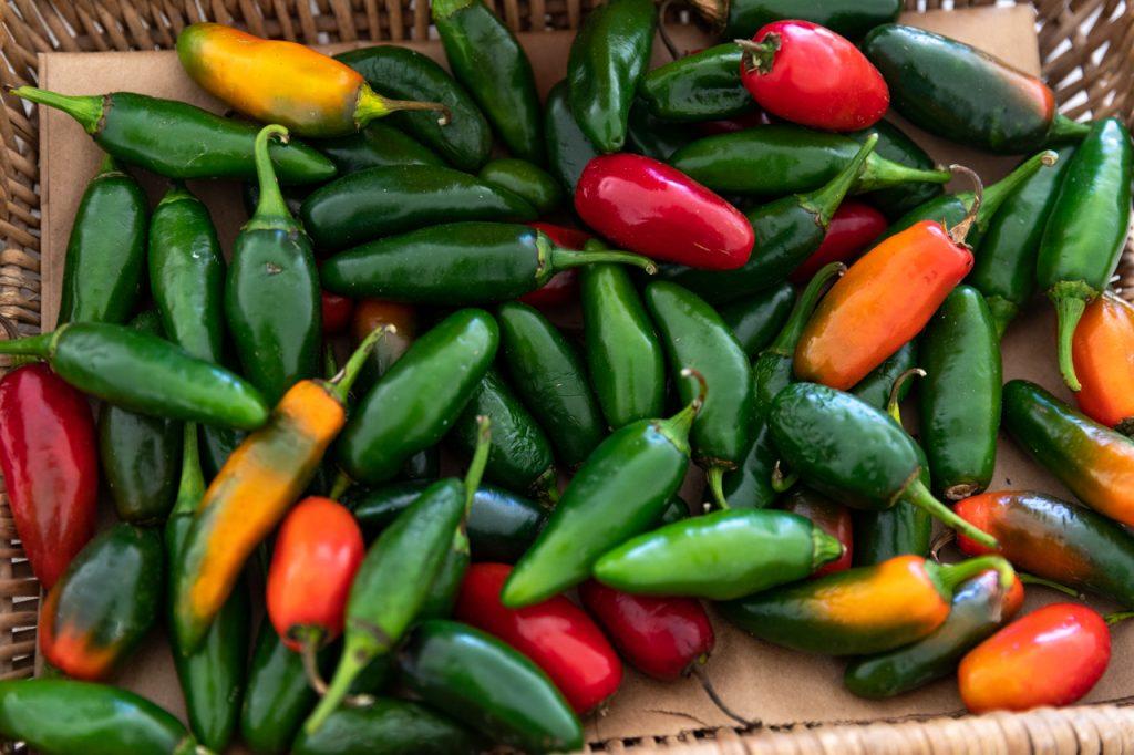 Jalapeño peppers from Rosebank Farm.