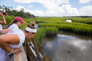 Students look out on marshlands at Stono Preserve.