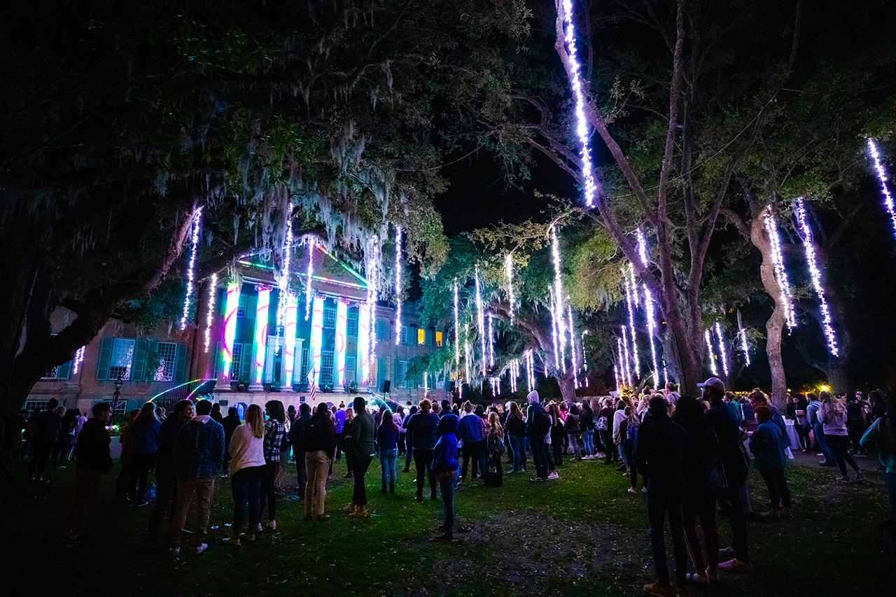 Cougar Night Lights