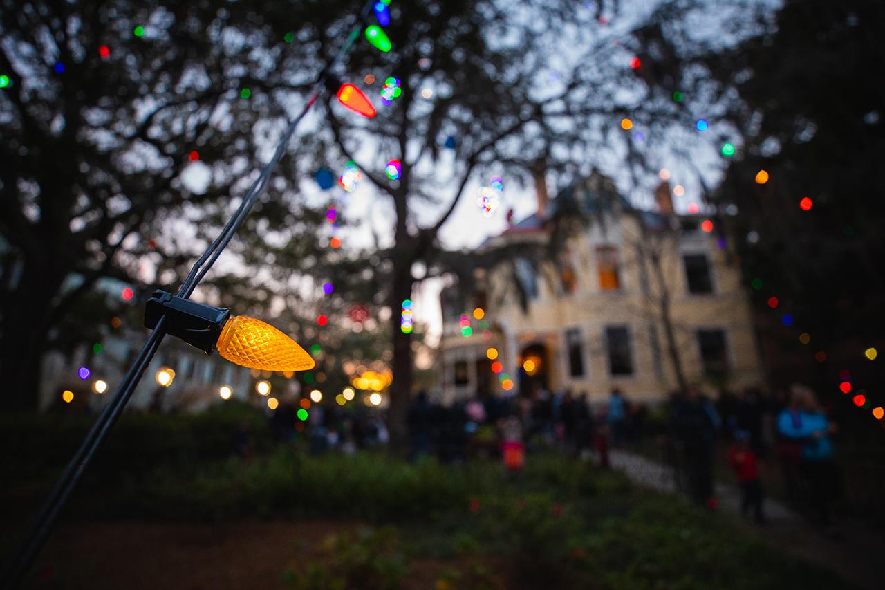 Sottile Tree Lighting