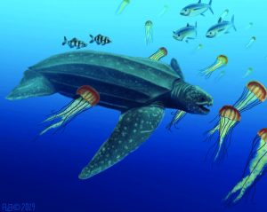 rendering of ancient leatherback sea turtle
