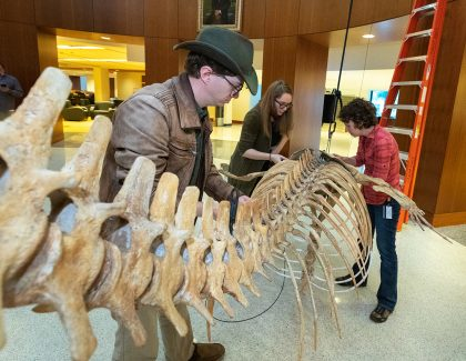 Ancient Whale Makes a Splash at Addlestone Library