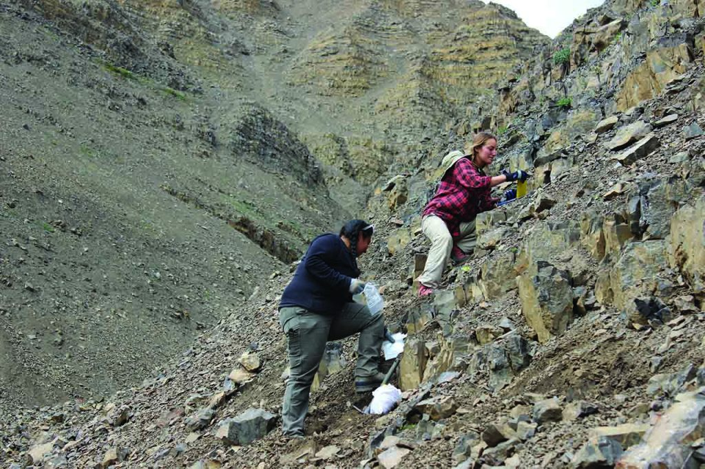 Meier and another researcher collect Jurassic limestones deposited after the end-Triassic mass extinction event.