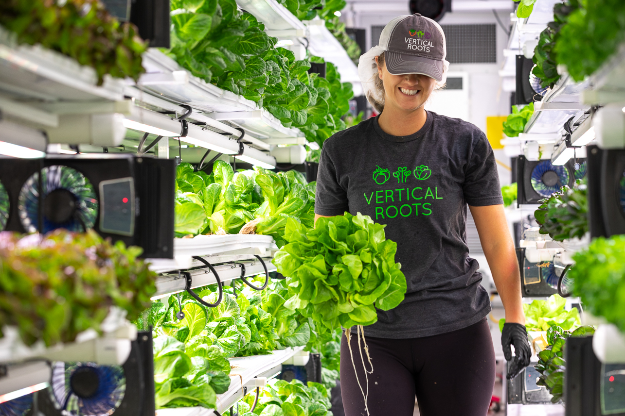 Mary Bryan ('21) a CofC Urban Studies with a focus on Sustainable Urbanism and a minor in Environmental Sustainable studies picks lettuce from the shelves inside the Vertical Roots pod.